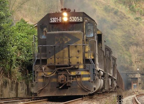Suzano quer trem de passageiros no Distrito de Palmeiras