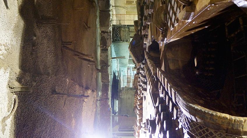 Tatuzão próximo ao paredão a ser escavado   Foto: Renato Lobo